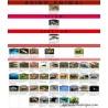 Cartel clasificación vertebrados